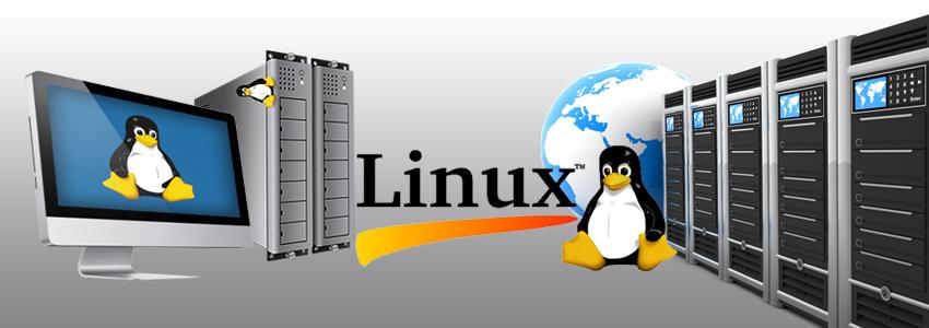 Key Factors that make Linux VPS Hosting a Right Hosting Option for ...